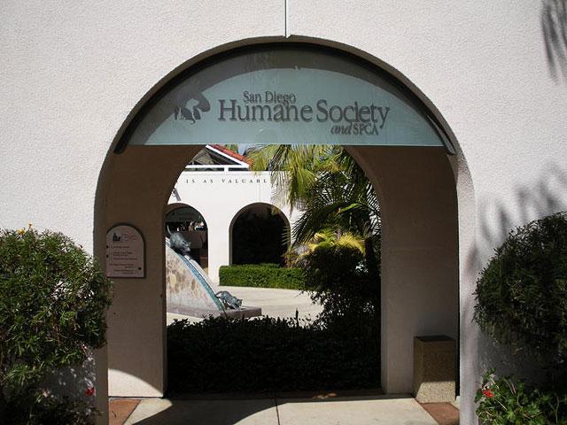 san-diego-human-society2